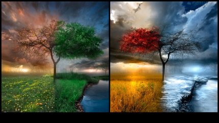 change tree